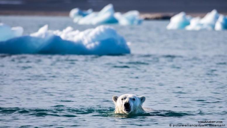 Arktik Okyanusu'ndaki Yıllık Buz Alanı Minimuma Ulaştı