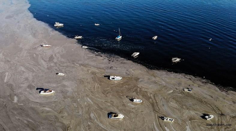 Çanakkale Boğazı'nda Müsilaj Yoğunluğu Sürüyor