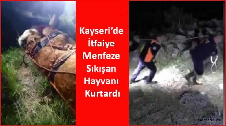 Kayseri'de İtfaiye Menfeze Sıkışan Hayvanı Kurtardı
