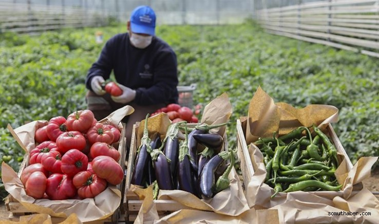 Tarımda Enflasyon Tam Gaz Sürüyor