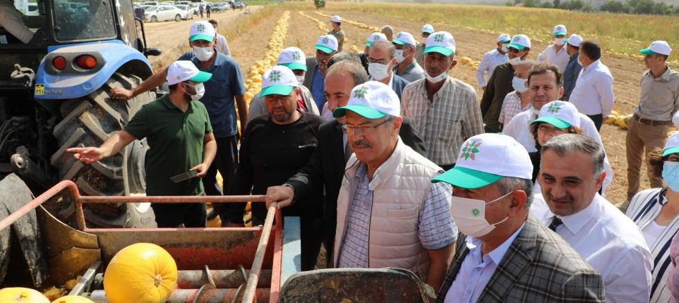Türkiye'de Bir İlk! Kayseri Şeker Geliştirdi